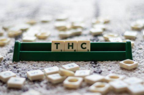 THC versus CBD